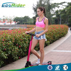 China Magnalium alloy Foldable Electric Scooter  for adults with lithium battery powered company