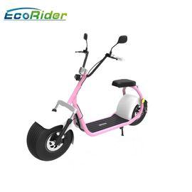 China Ecorider 2 Wheel Electric Bicycle Scooter , Lt019 Citycoco Bike With Double Seat factory