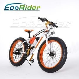 China 26 Inch Tires 2 Wheel Electric Bike Outdoor Off Road Dirt Electric Snowmobile Bikes High Speed factory