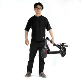 China 10 Inch Xiaomi 2 Wheel Folding Electric Scooter With A Dual Brake System factory